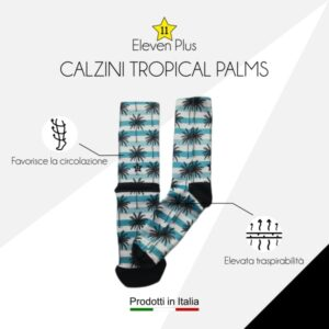 Calazini tropical palms